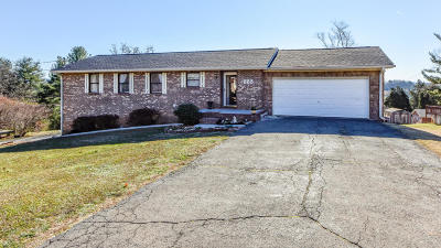 Lenoir City Single Family Home For Sale: 288 Wesley Rd