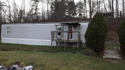Cumberland Gap Single Family Home For Sale: 145 Forrest Lane