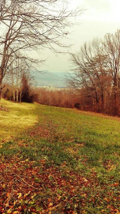 Meigs County, Rhea County, Roane County Residential Lots & Land For Sale: Randi Circle