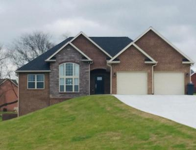 Maryville Single Family Home For Sale: 503 Carpenters View Drive