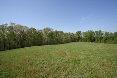 Greenback Residential Lots & Land For Sale: Peterson Rd