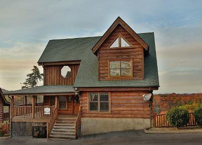 Sevierville Single Family Home For Sale: 2013 Cougar Crossing Way
