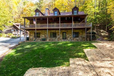 Clinton Single Family Home For Sale: 257 Lone Ridge Lane