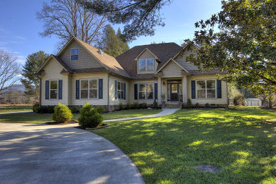 Townsend Single Family Home For Sale: 232 Riverview Rd