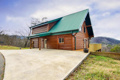 Pigeon Forge Single Family Home For Sale: 4430 New Pioneer Trail