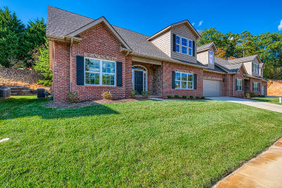 Knoxville Single Family Home For Sale: 4237 Platinum Drive