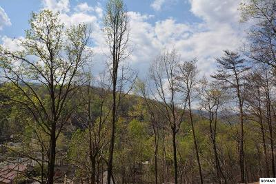 Gatlinburg Residential Lots & Land For Sale: 139 Water Tower Rd