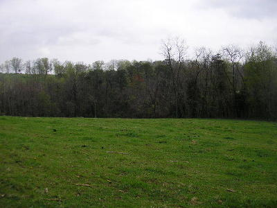 Grainger County Residential Lots & Land For Sale: Greenlee Rd
