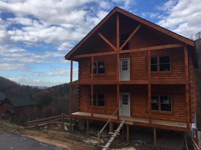Sevierville Single Family Home For Sale: 1119 Autumn Path Way