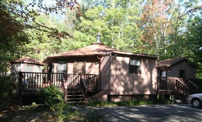 Gatlinburg Single Family Home For Sale: 1071 E E Foothills Dr