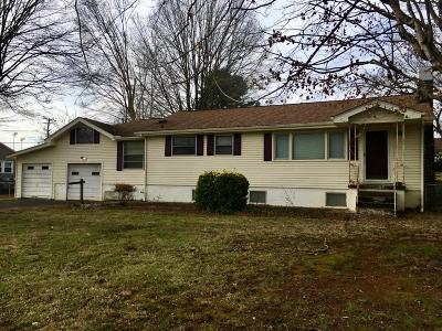 Loudon Single Family Home For Sale: 1042 Steekee St