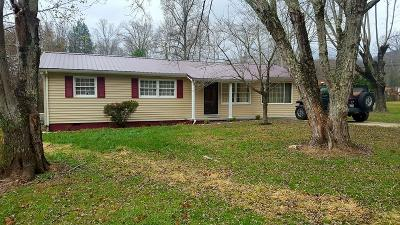 Caryville Single Family Home For Sale: 243 Loop Rd