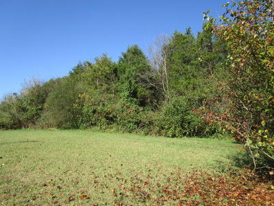 Grainger County Residential Lots & Land For Sale: Clinch Valley
