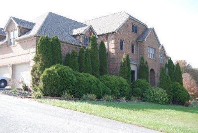 Lafollette Single Family Home For Sale: 450 Fairway Vista Lane