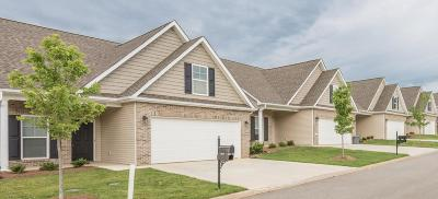 Sevier County Condo/Townhouse For Sale: 349 Franklin Meadows Way