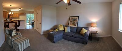 Sevier County Condo/Townhouse For Sale: 115 Pewter Way