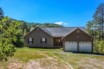 Sevier County Single Family Home For Sale: 3022 Bear Mountain Lane