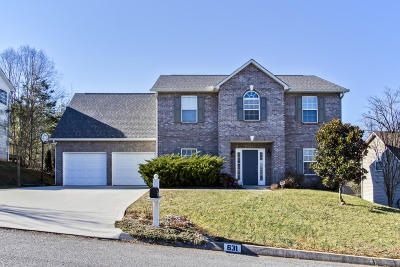 Knox County Single Family Home For Sale: 631 Mountain Pass