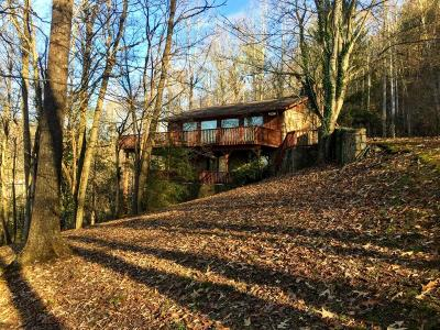 Gatlinburg Single Family Home For Sale: 341 Lewis Clabo Rd