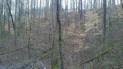 Speedwell Residential Lots & Land For Sale: Madon Hollow Rd