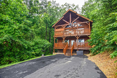 Sevier County Single Family Home For Sale: 3125 Lakeview Lodge Drive