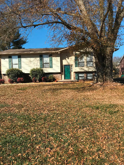 Sevier County Single Family Home For Sale: 420 First St