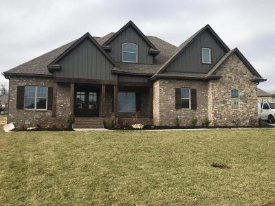 Lenoir City Single Family Home For Sale: 791 Biscayne Drive