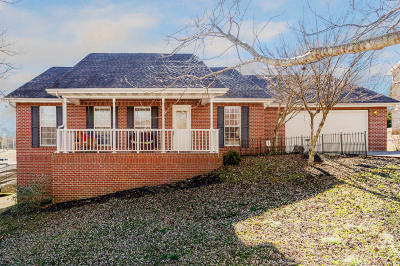 Friendsville Single Family Home For Sale: 3419 Summer Drive