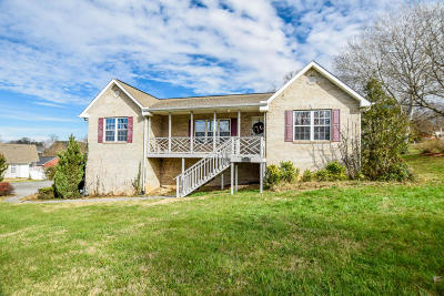 Sevier County Single Family Home For Sale: 1971 Big Buck Lane