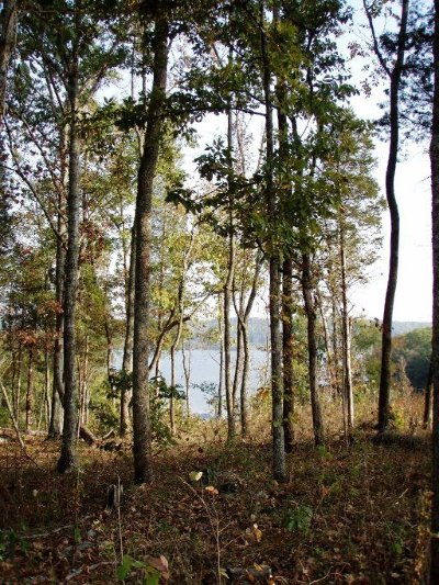 Meigs County, Rhea County, Roane County Residential Lots & Land For Sale: E Shore Drive
