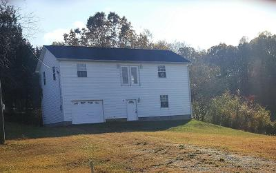 Grainger County Single Family Home For Sale: Boggs Road Rd