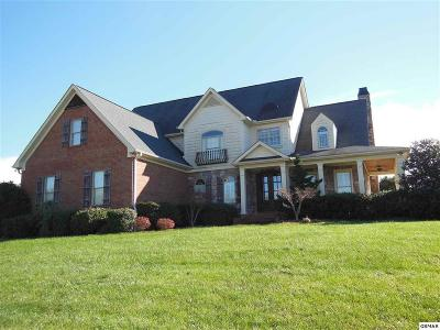 Sevierville Single Family Home For Sale: 1460 Landmark Blvd