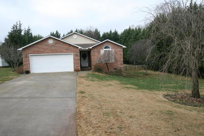 Maryville Single Family Home For Sale: 341 Dawn Hill Lane