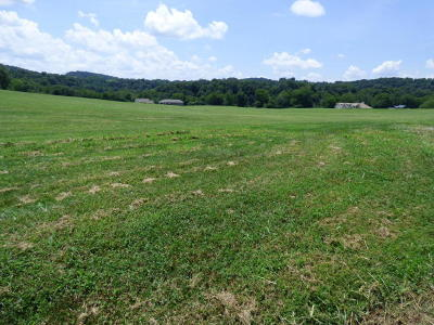 New Market Residential Lots & Land For Sale: 2030 River Mist Circle
