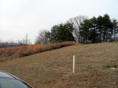 Anderson County Residential Lots & Land For Sale: Trillium Drive