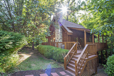 Sevier County Single Family Home For Sale: 3003 Eagles Claw Way