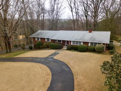Knoxville Single Family Home For Sale: 3613 Bluff Point Drive