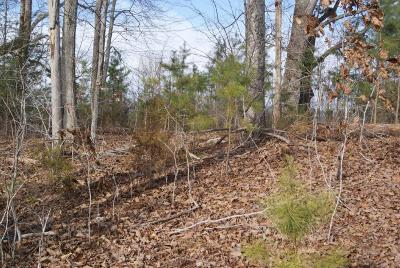 Overlook Bay Residential Lots & Land For Sale: Lot#23 Horseshoe Bend