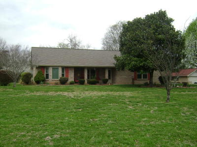 Sevierville Single Family Home For Sale: 1519 Double D Drive