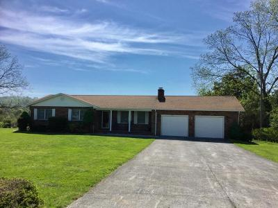 New Tazewell Single Family Home For Sale: 421 Brook Drive