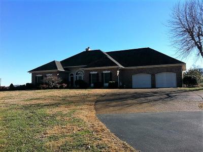 Lafollette Single Family Home For Sale: 4206 General Carl W Stiner Hwy