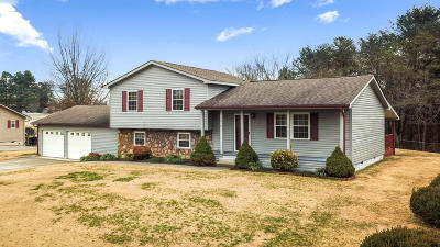 Maryville Single Family Home For Sale: 3018 Pleasant View Ave