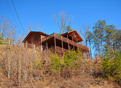 Sevierville Single Family Home For Sale: 1614 Bluff Ridge Rd
