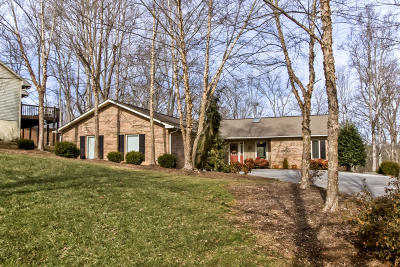 Blount County, Knox County, Loudon County, Monroe County Single Family Home For Sale: 155 Saloli Way