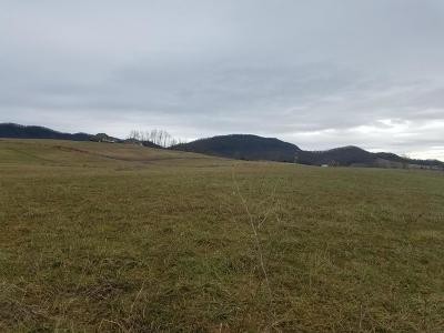 Claiborne County Residential Lots & Land For Sale: Skylark Lane
