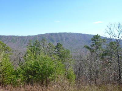 Maryville Residential Lots & Land For Sale: Allegheny Cove Way