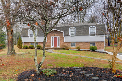 Knoxville Single Family Home For Sale: 601 Worcester Drive Rd