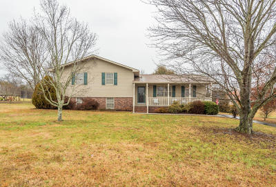 Knoxville Single Family Home For Sale: 7720 Andersonville Pike