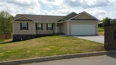 Corryton Single Family Home For Sale: 6654 Grace Nicely Lane