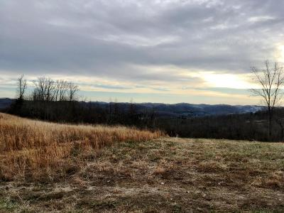 Union County Residential Lots & Land For Sale: Panoramic Drive